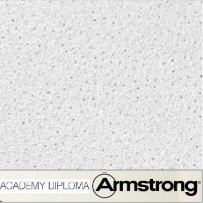 Armstrong Academy Diploma Tegular